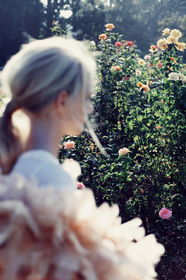 SUMMER_ROYAL_ROMANCE_FOX-43