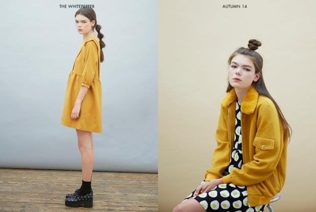 Autumn1416