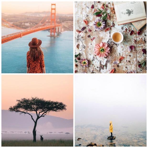 Larkspur Vintage | Four Instagrams To Follow