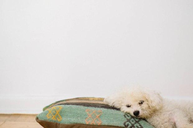 Larkspur Vintage | Kilim Pillow Talk