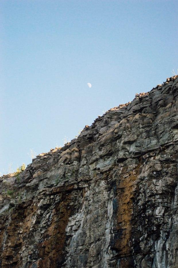 Larkspur Vintage | Marmora Mine